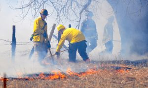 Firefighters battle a wildfire northwest of Fort Collins near LaPorte on March 15.