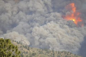Flames engulf Young Gulch during the 2012 High Park Fire.