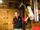 Handler Todd Radermacher interacts with the tallest horse, Red.