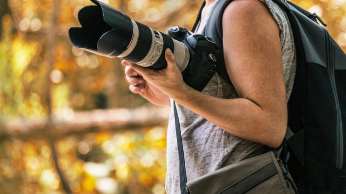 Mountain Lion Photography Workshop Saturday, March 23, 2019 at Sylvan Dale Ranch, Loveland.