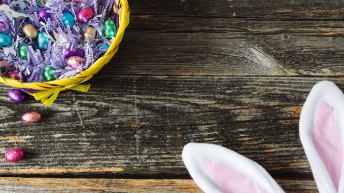 Easter Egg Hunts in Northern Colorado