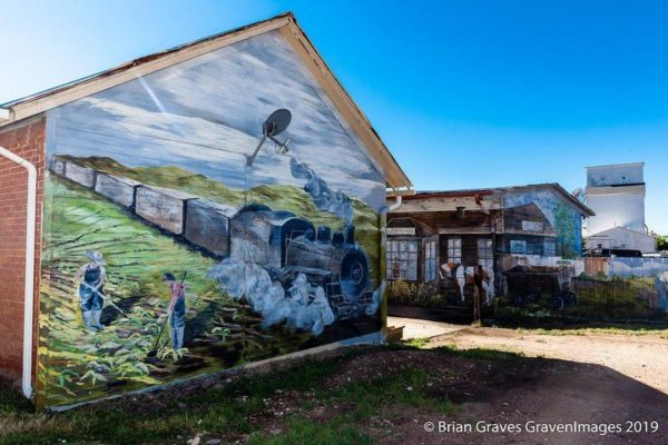 Wellington's Memories and Beginnings mural. Photo by Brian Graves