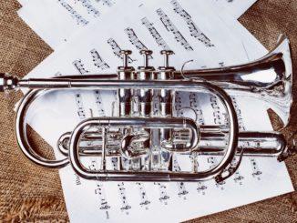 The Wellington Community Band
