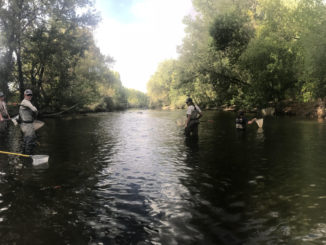 Colorado Parks and Wildlife officials on the Cache la Poudre River investigating the fish kill event in September 2018